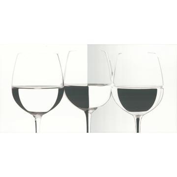 Плитка-декор настенный Paradyz Vivida 60x30, Bianco, Vine