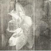Плитка-панно настенное Paradyz Manteia 60x60, Grafit , А