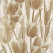 Плитка-панно настенное Paradyz Coraline 60x60, Tulipany